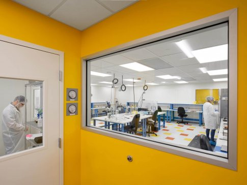 Neptune Medical facility renovation - yellow colored wall with large glass window